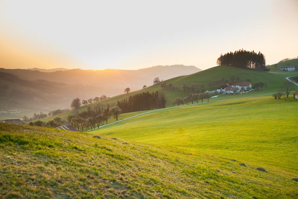 Mostviertel, Niederösterreich, Mostbirnbaum, Birnbaum, Birnbaumblüte, wandern, Wanderung, Wanderurlaub, Wanderreise, Urlaub, Sonnenuntergang