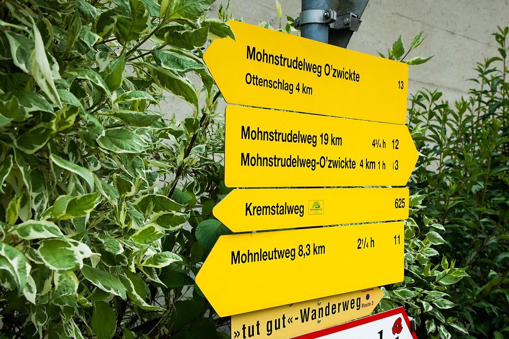 Mohnleutweg, Mohndorf, Armschlag, Mohnfelder, Mohnblüte, Waldviertel, Wald4tel, Niederösterreich, Wandern, Wanderung, Ausflug