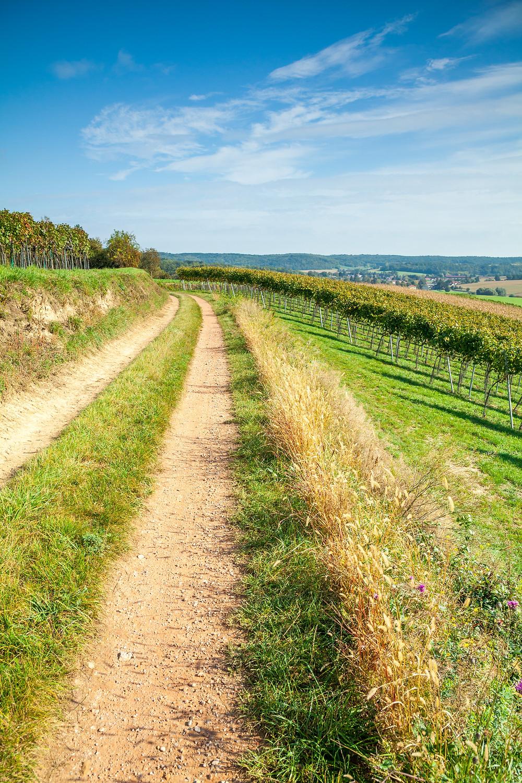 Wandern, Weinviertel, Niederösterreich, Wanderung, Weg