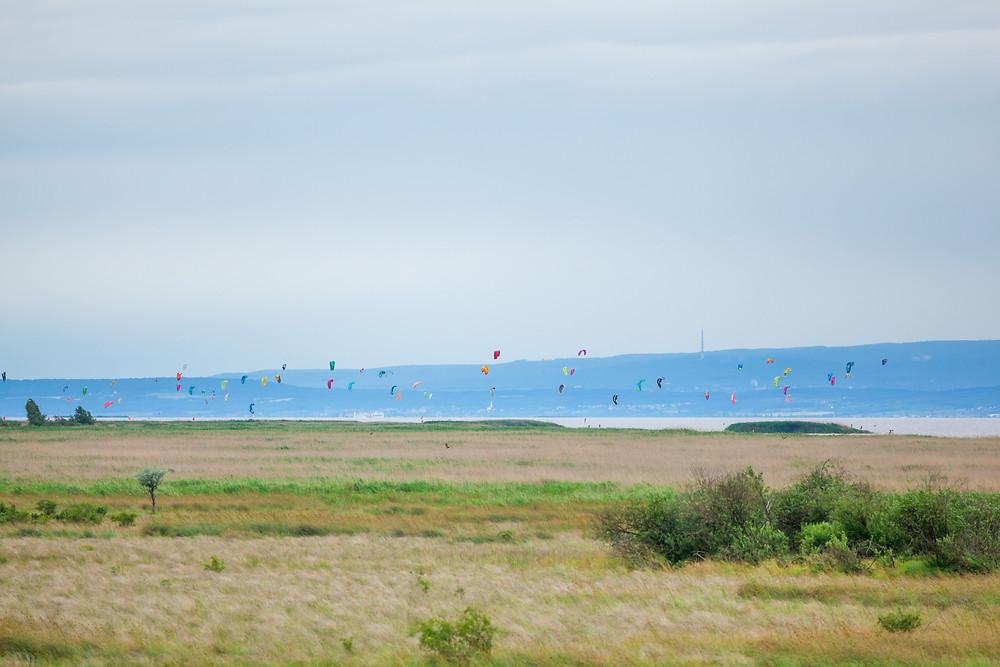 Kiter, Kiten, Kitesurfer, Surfer, Podersdorf, Neusiedler See, Neusiedlersee, Burgenland