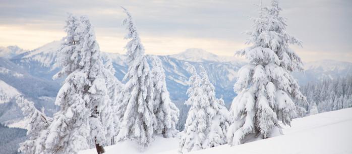 Wandern Alpen: Tirolerkogel - Annabergerhaus in Niederösterreich