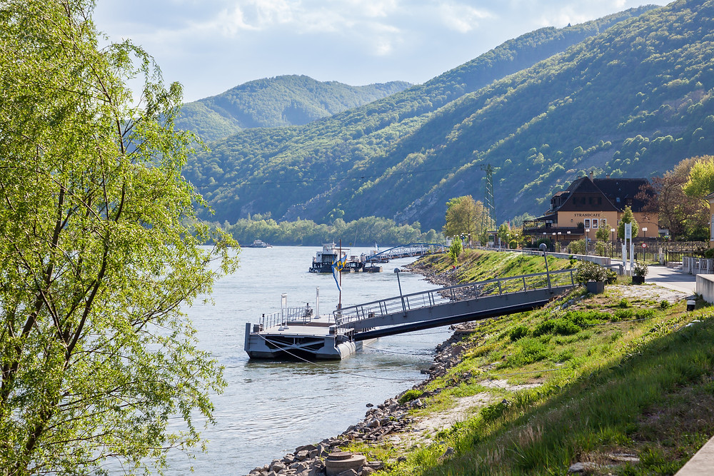 Rollfähre, Donau, Spitz an der Donau, Wachau, Niederösterreich