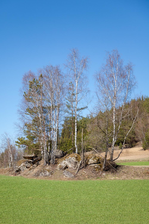 Steinformation, Felsen, Granit, Waldviertel, Niederösterreich