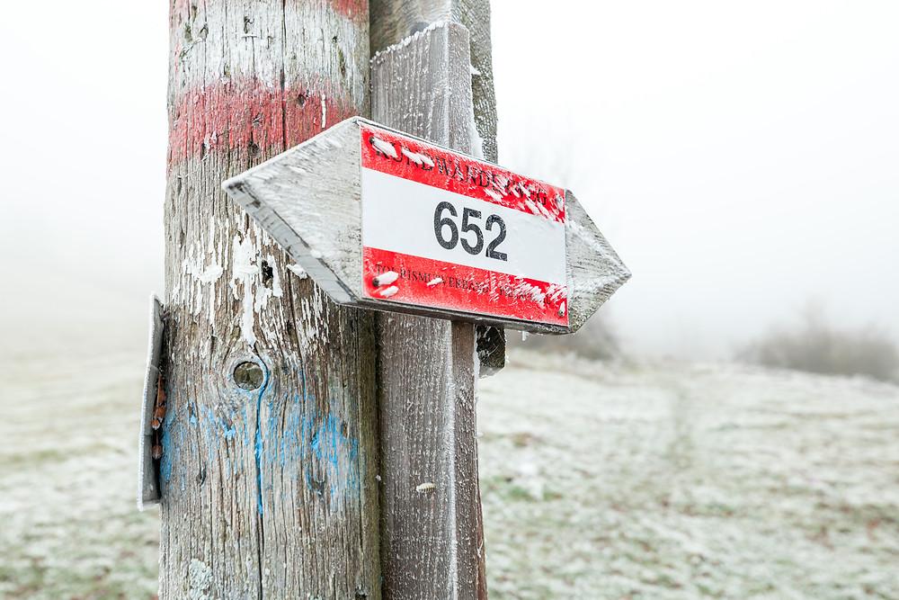 Kaiserkogel, Eschenau, Pielachtal, Traisental, Alpenvorland, Niederösterreich, Wandern, Wanderung, Winterwandern, Winterwanderung, Raureif, Wandermarkierung