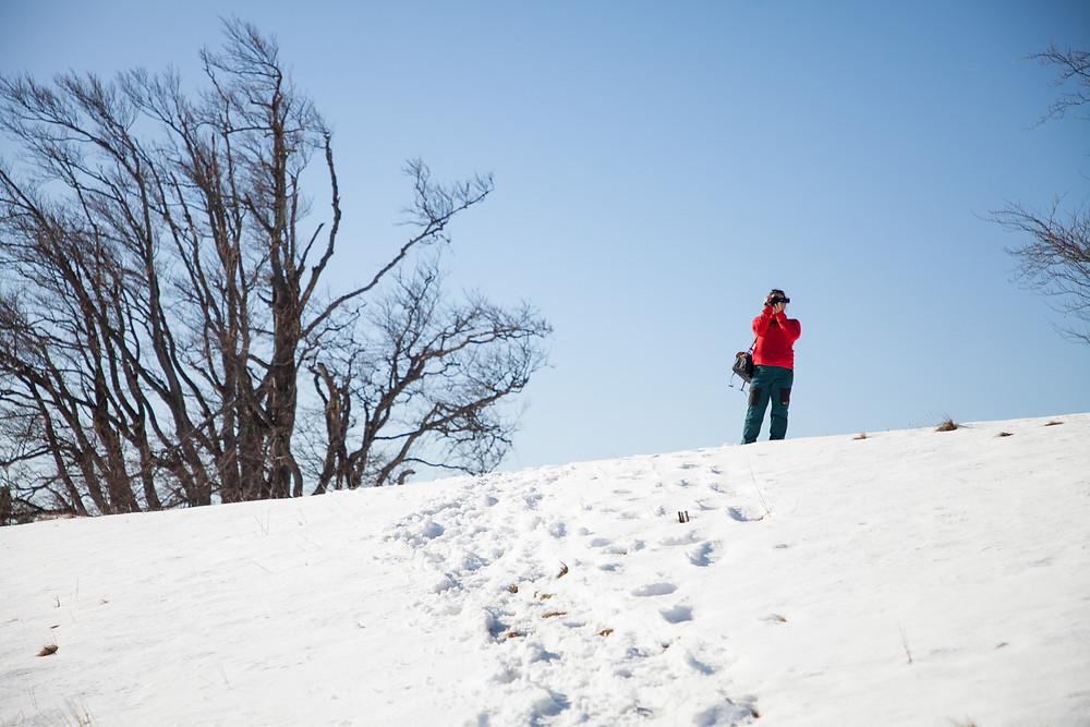 Blochboden, Unterberg, Schnee, Winter, Ramsau, Niederösterreich, Voralpen, Wandern, Wanderungen, Steig, Wanderweg, Winterwandern
