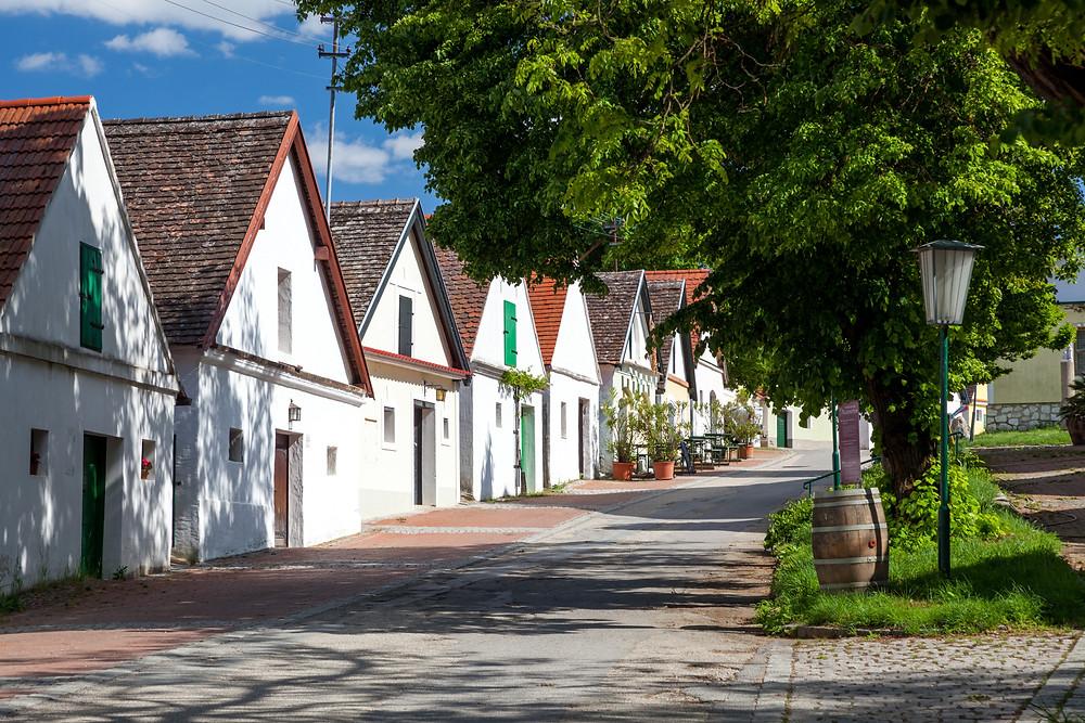 Kellergasse, Weinkeller, Falkenstein, Ruine Falkenstein, Falkenflug, Weinviertel, Niederösterreich, Wandern, Wandertipp, Ausflug