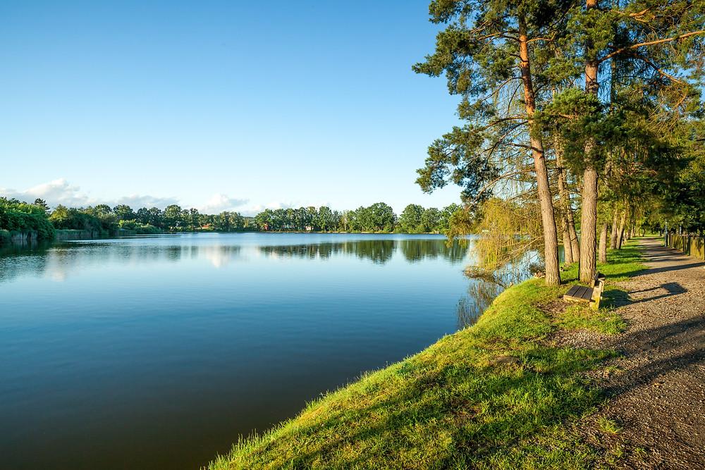 großer Harabruckteich, Harabruckteich, Teich, Karpfenteich, Fischteich, See, Gmünd, Waldviertel, Niederösterreich, Wandern, Wanderung, Ausflug.