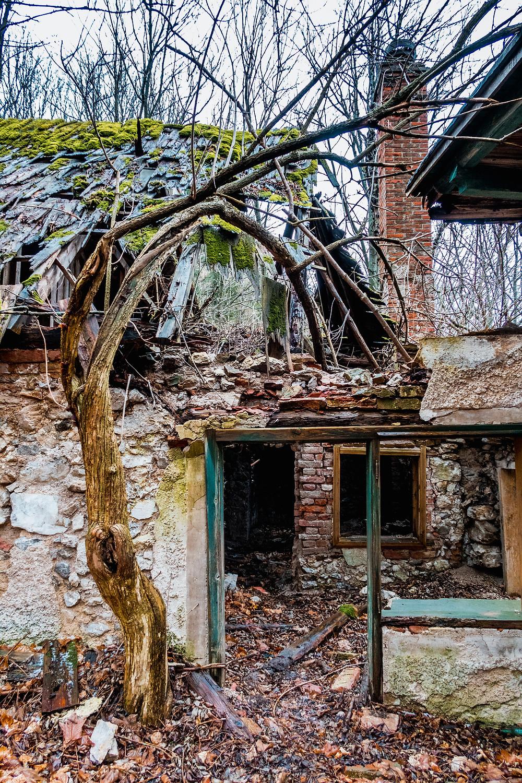 Lost-Place, Wienerwald, Gaisstein, Niederösterreich, Wandern, Wanderung, Ruine, Bauernhaus, mystisch, Winterwandern
