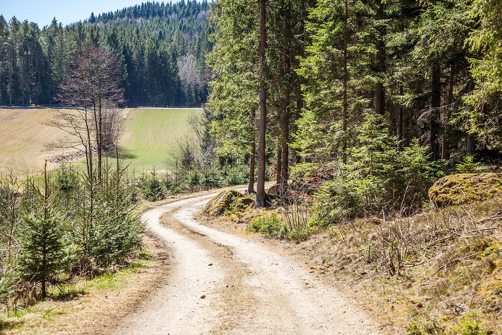 Lohnbachfall, Waldviertel, Niederösterreich, Wandern, Wanderung, Wanderweg