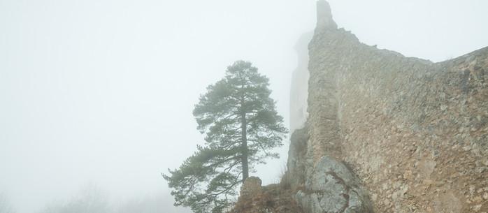 Wandern Wienerwald: Araburg von Kaumberg auf einer Rundwanderung in Niederösterreich