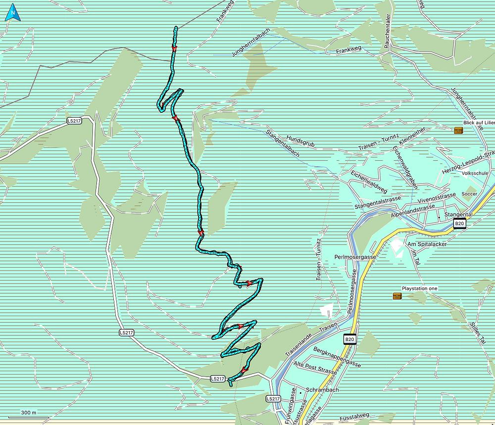 Lorenzipechkogel, Schneerosenwarte, Lilienfeld, Niederösterreich, Wandern, Wanderung, Track, Route, Wegführung, Wanderweg
