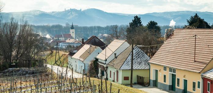 Wandern (fast) Wachau: Weingartenwanderung in Rohrendorf bei Krems in Niederösterreich