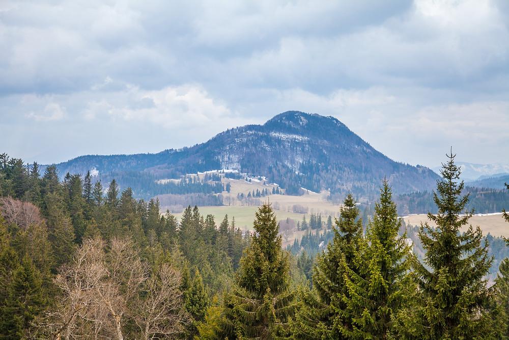 Kiensteinder Öde, Ebenwaldhöhe, Voralpen, Kleinzell, Niederösterreich, Wandern, Wandung, Almen, Alm, Weide, Hochstift