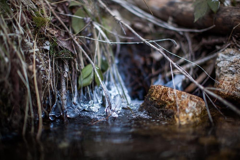 Wasser, Bach, Eis, Detailaufnahme, Waldviertel, Niederösterreich