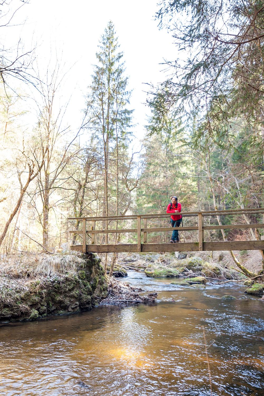 Brücke, Kamptal, Kamp, Waldviertel, Niederösterreich, Kamptal, Wald, Wandern, Wanderung, Wanderin