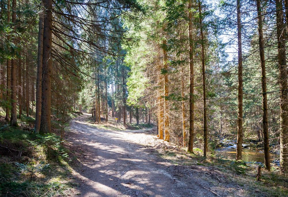 Wanderweg, Wanderung, Wandern, Kamptal, Kamp, Rappottenstein, Waldviertel, Niederösterreich