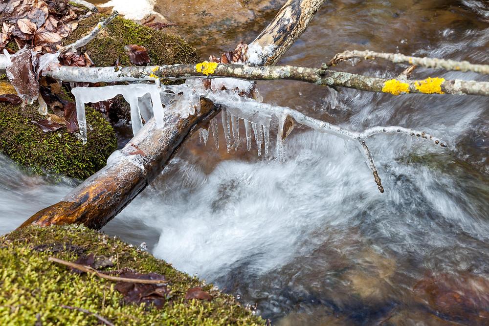 Eiszapfen, Bach, Bachlauf, Wasser, Moos, Wald