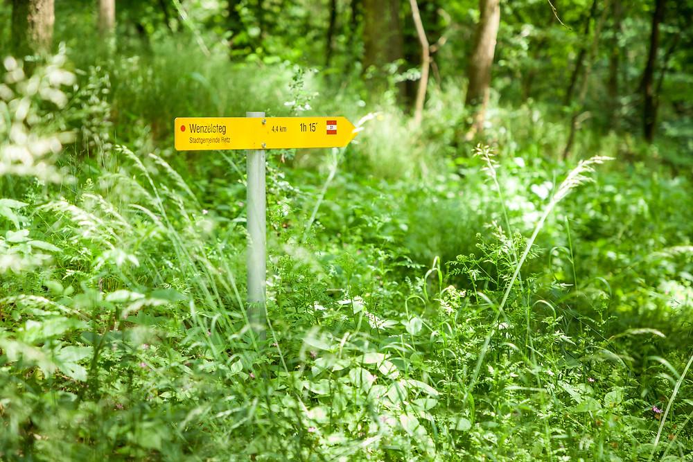 Retz, Weinviertel, Retzer Land, Wenzelsteg, Wandern, Wanderung, Ausflug, Niederösterreich
