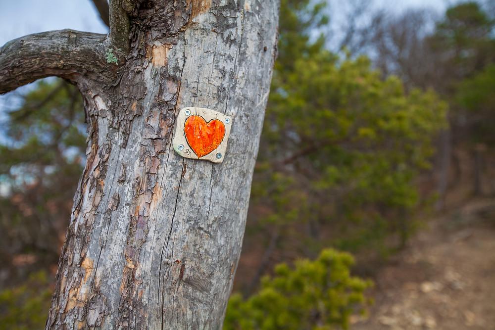 Vogelbergsteig, Wachau, Herz am Baum, Wandern, Wanderung