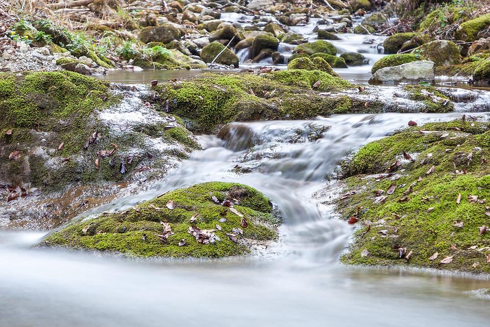 Bach, Bachlauf, Hohenstein, Pielchtal, Mostviertel, Niederösterreich, Wandern, Wanderung, Bergwandern, Wasser