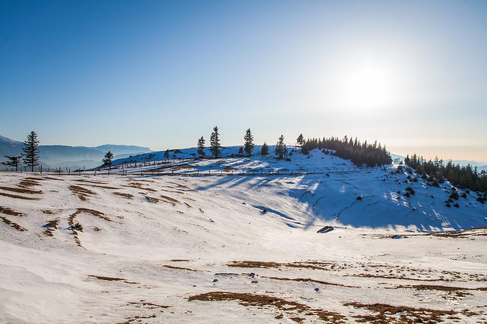 Blochboden, Unterberg, Voralpen, Niederösterreich, Winterwandern, Wandern, Wanderungen, Schnee, Frühling