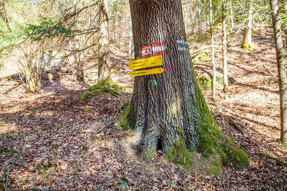 Kamptal, Kamp, Waldviertel, Niederösterreich, Wandern, Wanderung