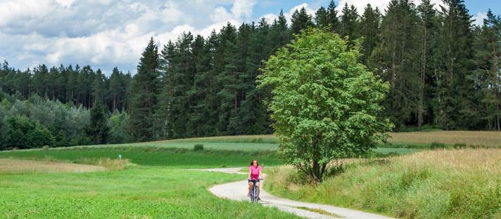 Radfahren Waldviertel: von Gmünd nach Schrems in Niederösterreich