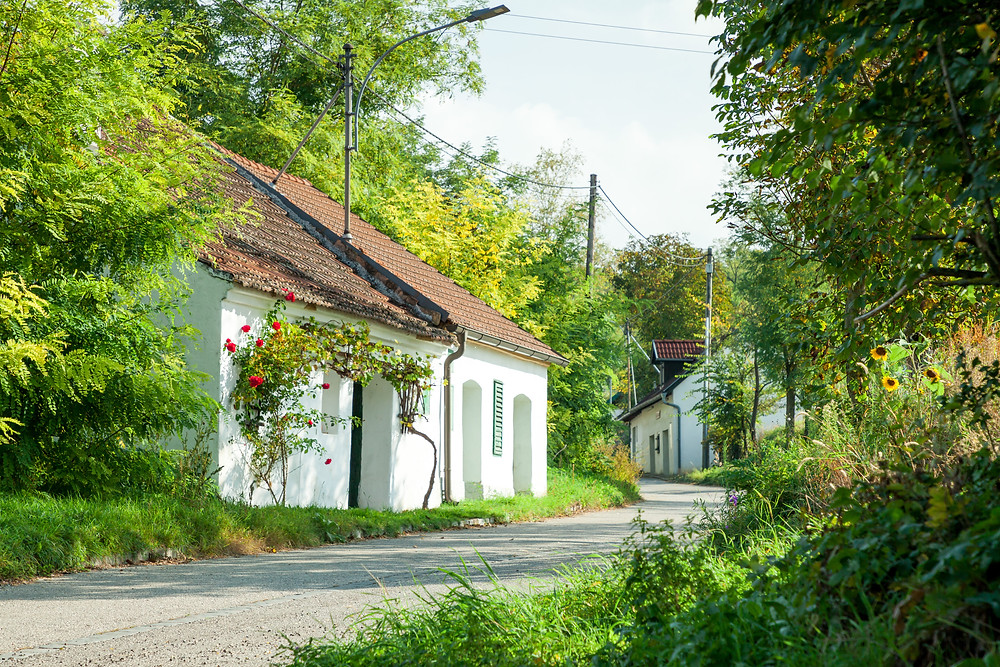 Kellergasse, Weinviertel, Niederösterreich, Weinkeller, Wandern, Wanderung, Großwetzdorf