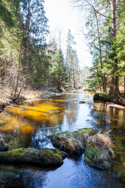 Kamp, Kamptal, Kleiner Kamp, Rappottenstein, Schütt, Waldviertel, Niederösterreich, Wandern, Wanderung