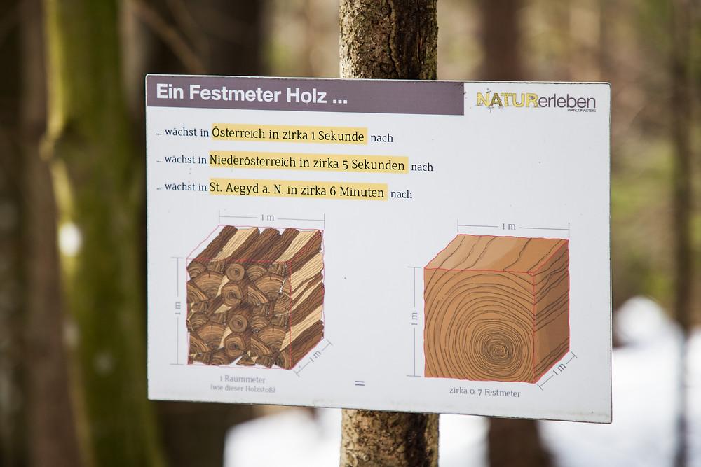 Naturerleben-Pfad, Zdarskyhütte, St. Aegyd, Voralpen, Niederösterreich, Wancurasteig, Steig, Winterwandern, Wandern, Wanderung