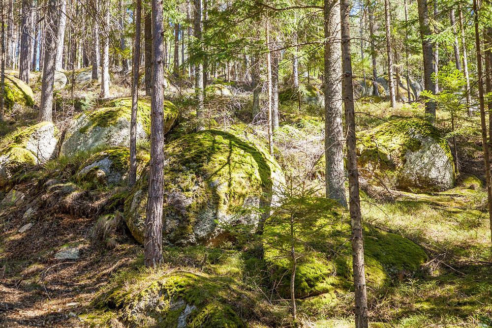 Lohnbachfall, Waldviertel, Niederösterreich, Wandern, Wanderung, Granit, Felsen, Steinformation