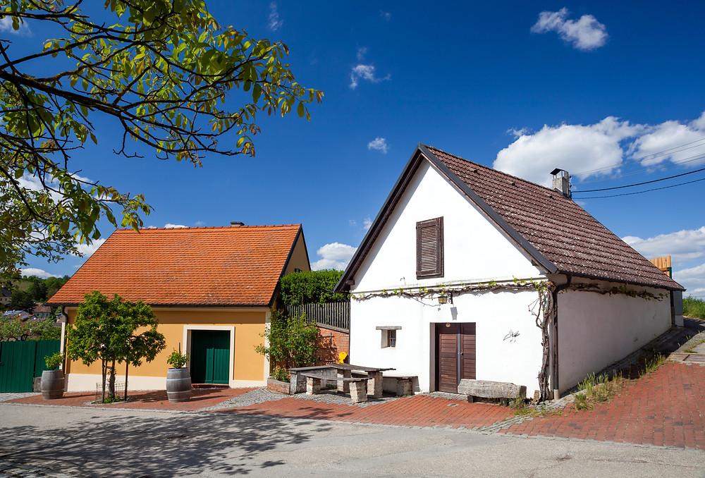 Falkenstein, Ruine Falkenstein, Falkenflug, Weinviertel, Niederösterreich, Wandern, Wandertipp, Ausflug, Kellergasse, Weinkeller