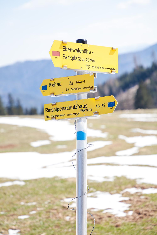 Ebenwaldhöhe, Reisalpe, Kleinzelt, Hinteralm, Kleinzeller Hinteralm, Gutensteiner Alpen, Alpenvorland, Schindeltal, Niederösterreich, Wandern, Wanderung, Bergwandern,