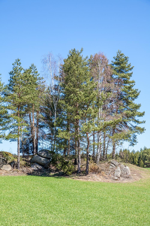 Felsen, Steinformation, Granit, Waldviertel, Wandern, Wanderung