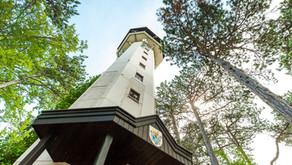 Wandern Wienerwald: Berndorf - Mühlsteig -Guglzipf - Aichkreuz - St. Veit in Niederösterreich