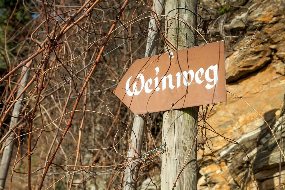 Joching, Wösendorf, St. Michael, Spitz, Wachau, Donautal, Donau, Höhenweg, Buschandlwand, wandern, Wanderung, Niederösterreich, Österreich, Wanderreise, Wanderurlaub, Weinweg, Weinbergwanderung