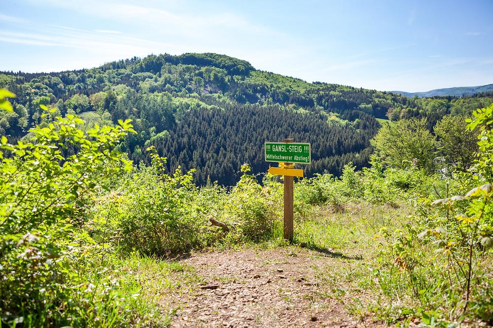 Gansl-Steig, Steig, Hafnerberg, Klein Mariazell, Via Sacra, Wallfahrt, Wienerwald, Niederösterreich, 3-Kirchen-Wanderung, Wandern, Ausflug, Wandertipp
