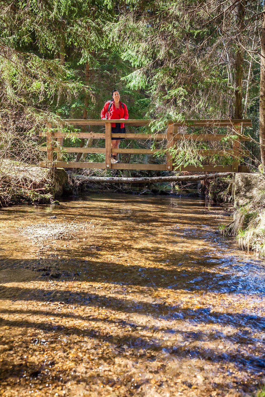 Holzbrücke, Brücke, Lohnbachfall, Waldviertel, Niederösterreich, Wandern, Wanderung, Wanderin