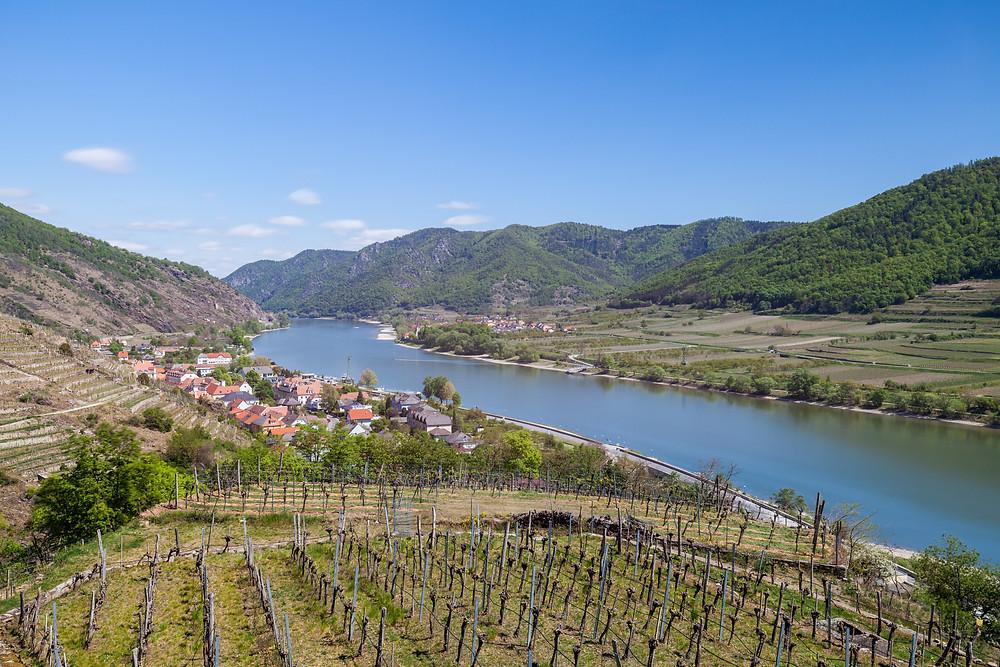 Wachau, Spitz, Niederösterreich, Donau, Wandern, Ausflug