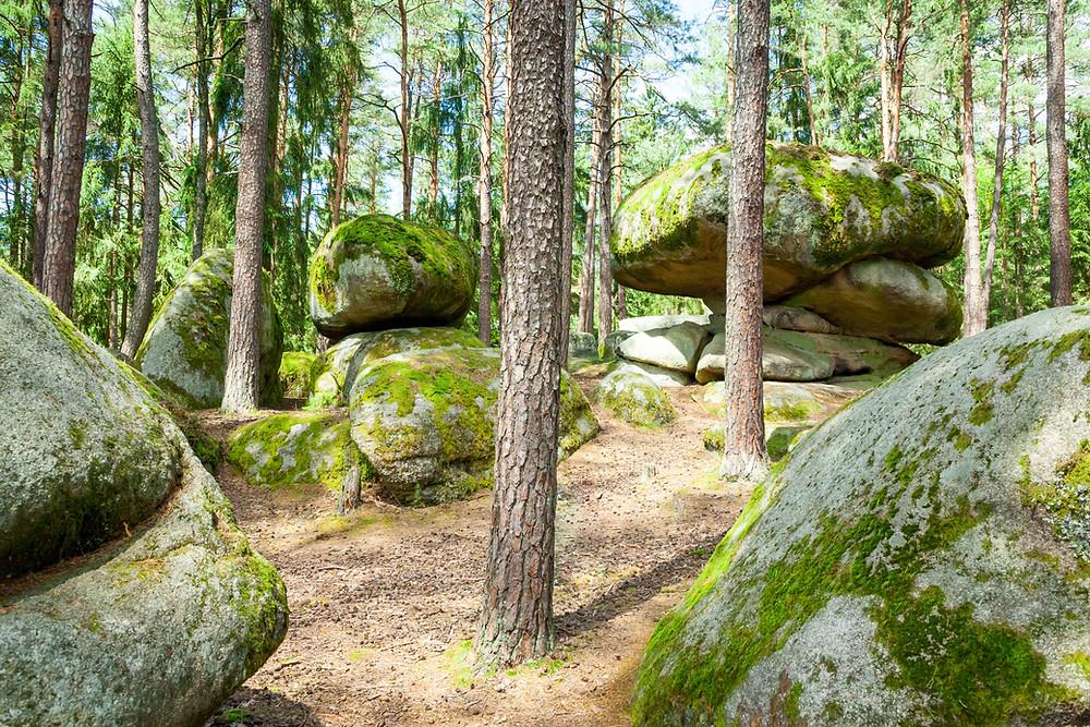 Pilzstein, Blockheide, Wackelsteine, Granit, Felsformationen, Gmünd, Waldviertel, Niederösterreich, Wandern, Wanderung, Ausflug, Naturpark, Naturdenkmal , Plinsten