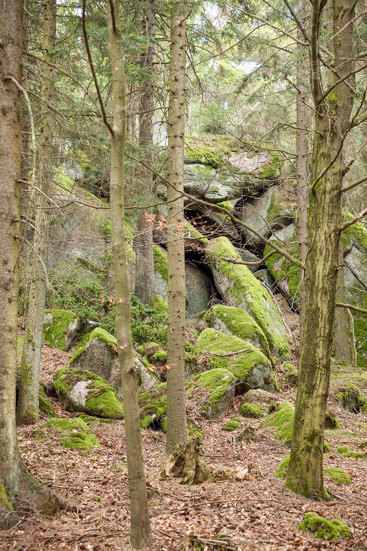 Felsen, Granit, Waldviertel, Niederösterreich, Wandern, Wanderung