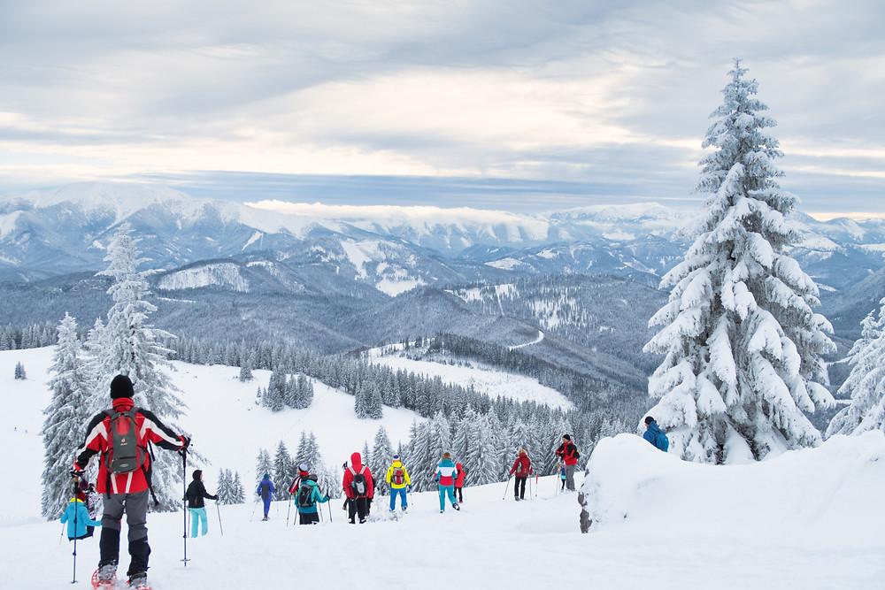 Tirolerkogel, Annaberghaus, Alpen, Wanderung, Wandern, Wanderweg, Winterwandaerung, Winterwandern, Schnee, Winterwald, Tourenschi, Schneeschuh
