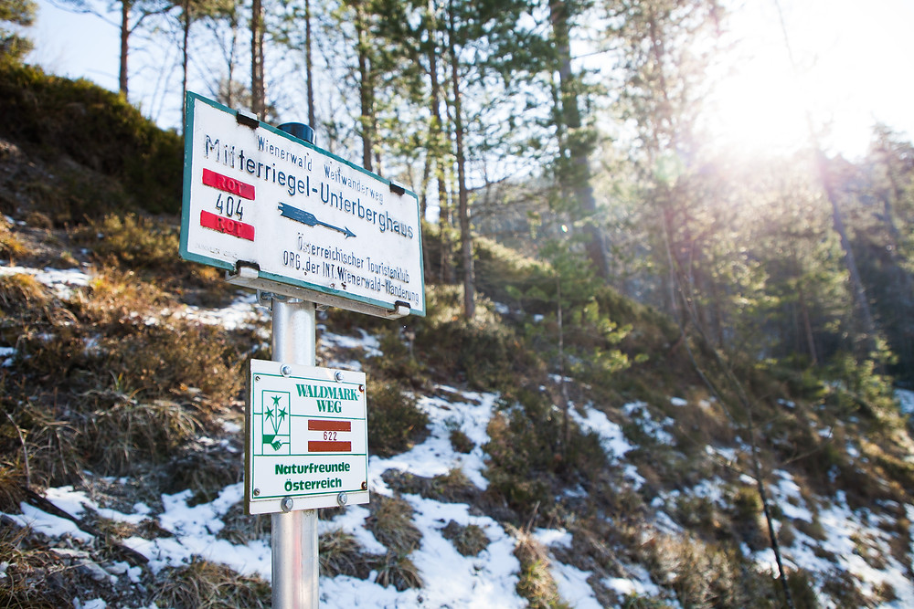 Dürrhölzer Kreuz, Wanderweg, Unterberg, Mitterriegel, Wandern, Wanderung, Niederösterreich, Voralpen, Winterwandern, Steig, Bergerlebnis