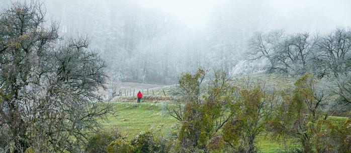 Wandern Alpen: von Eschenau auf den Kaiserkogel in Niederösterreich