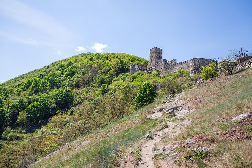 Ruine Hinterhaus, Spitz an der Donau, Wachau, Niederösterreich, Ruine, Burg, Wandern, Ausflug, Wandertipp