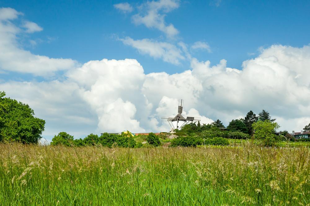 Retz, Retzer Windmühle, Windmühle, Weinviertel, Retzer Land, Wenzelsteg, Wandern, Wanderung, Ausflug, Niederösterreich