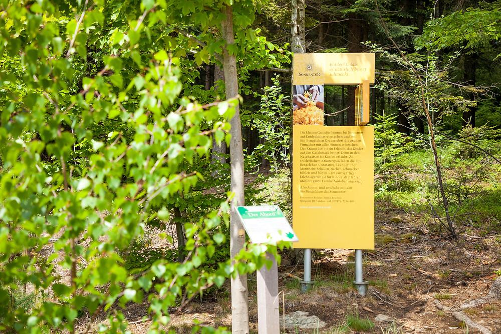 Aubergwarte, Sonnentor, Kräuterwanderweg, Tutgut-Wanderweg, Sprögnitz, Waldviertel, Wald4tel, Niederösterreich, Wandern, Wandertipp, Ausflug, Baumhoroskop, Kelten