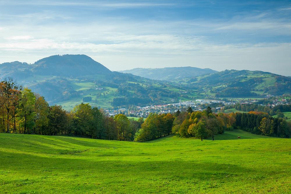 Almwiese, Scheibbs, Mostviertel, Niederösterreich,Wandern, Wanderung, Herbst