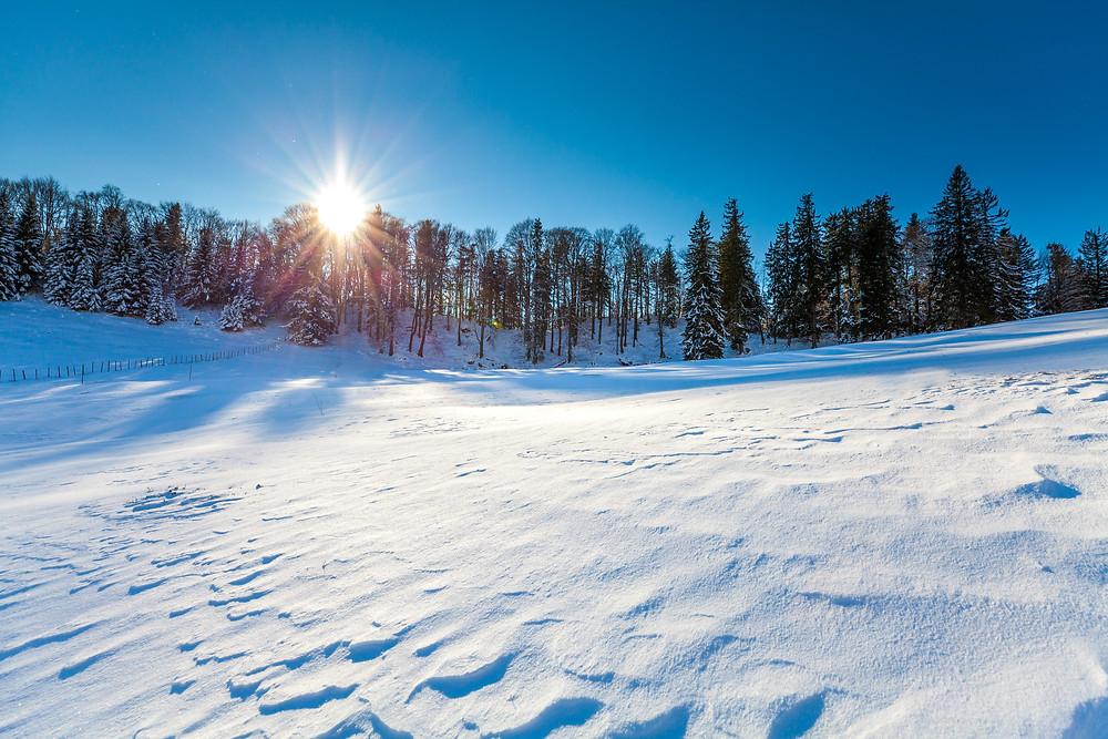 Eisenstein, Alpenvorland, Niederösterreich, Mostviertel, Traisental, Pielachtal, Türnitz, Wandern, Wanderung, Wandertipp, Winterwandern, Gipfeltour, Schnee, Winter, Weide, Alm