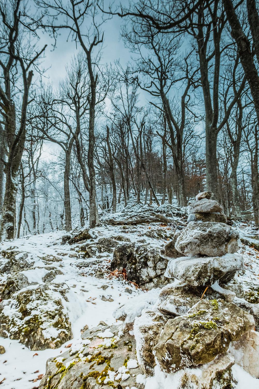 Gaisstein, Wienerwald, Niederösterreich, Winterwandern, Wandern, Wanderung, Mystische Stimmung, kahle Bäume, Gipfel, Schneesturm, düster, dunkel, Hexenwald,